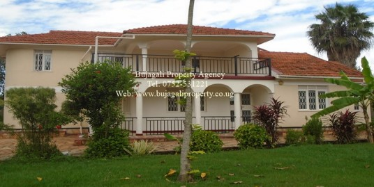 HOUSE FOR RENT IN JINJA WITH RIVER VIEW