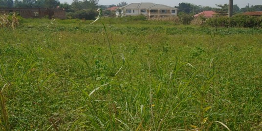60ft x 100ft Titled Plot for Sale in Jinja Town