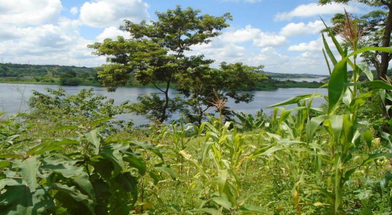 2.5 Acre Land for Sale along the Nile River, Jinja, Bujagali Road