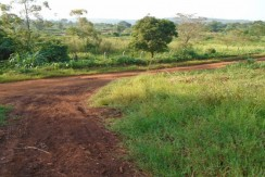 Plots for Sale in Jinja, Uganda