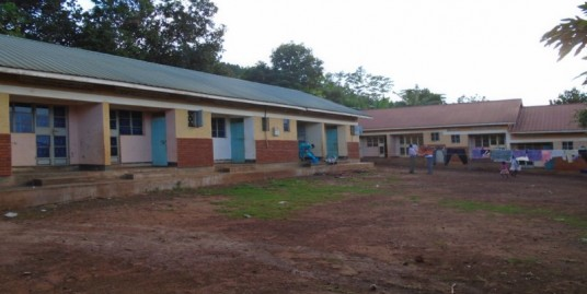 13 Apartment Units on 2 Housing Blocks For Sale in Jinja