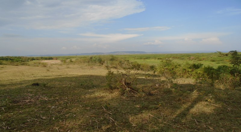 JINJA INDUSTRIAL LAND FOR SALE IN MASESE