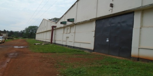 Ware Houses For Rent / Sale in Jinja Town and Surrounding Suburbs