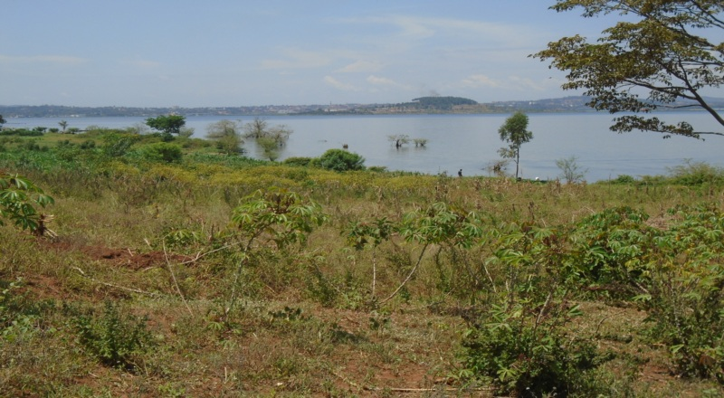 3 ACRES OF MAILO TITLED LAND TOUCHING LAKE VICTORIA