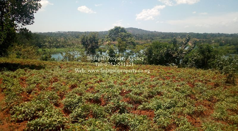 RIVER NILE LAND FOR SALE IN JINJA BUKOSE