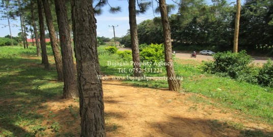 COMMERCIAL LAND FOR SALE IN IGANGA UGANDA
