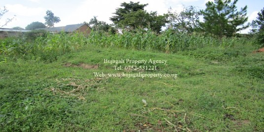 HALF ACRE PLOT FOR SALE IN IGANGA MUNICIPALITY