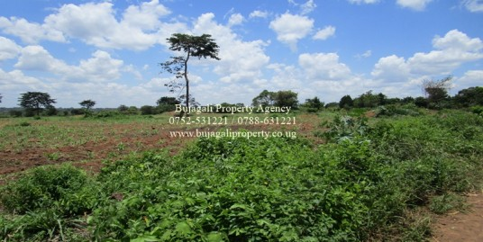 200 ACRE AGRICULTURAL LAND IN KAMULI