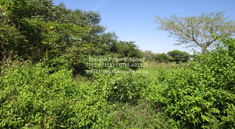 596 ACRES OF LAND FOR SALE IN KAMULI WITH RIVER NILE ACCESS