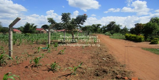 PLOTS IN THE SAME AREA FOR SALE AT BULUBANDI IGANGA
