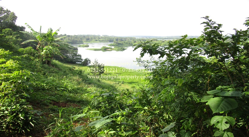 LAND FOR SALE ON THE NILE JINJA