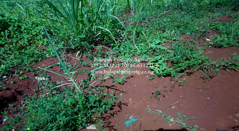 JINJA KASOWA KYABIRWA COUNTYR HOME LAND FOR SALE