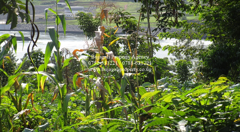 3.6 ACRE RIVER NILE LAND NEAR BUJAGALI DAM IN JINJA