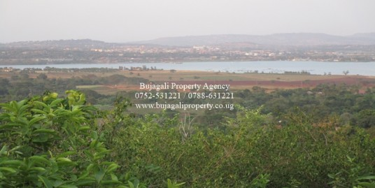 3 ACRES OF TITLED HILL TOP LAND IN NJERU MUNICIPALITY