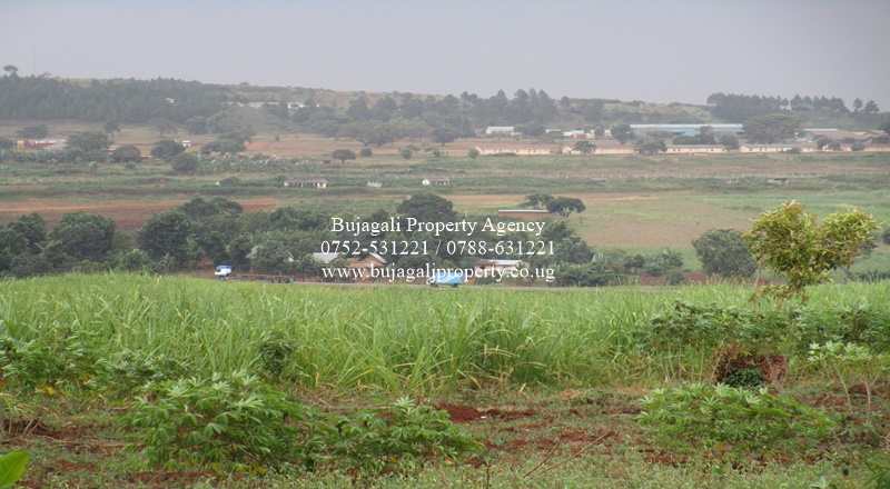 9 ACRE TITLED LAND ALONG JINJA IGANGA HIGHWAY