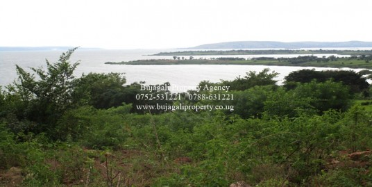 40 ACRE LAND MAYUGE HILL SIDE WITH LAKE VIEWS