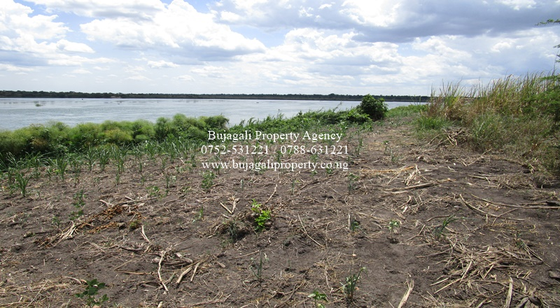 20 ACRES FOR SALE ALONG THE NILE AT NAMASAGALI KAMULI