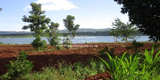 3 ACRES OF PRIME TITLED LAND ALONG THE NILE