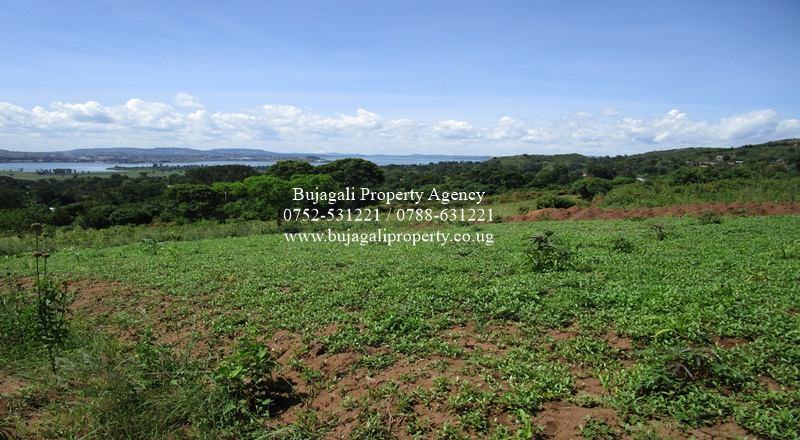 3.5 ACRE MAILO TITLED LAND NJERU BUIKE ON THE HILL SIDE