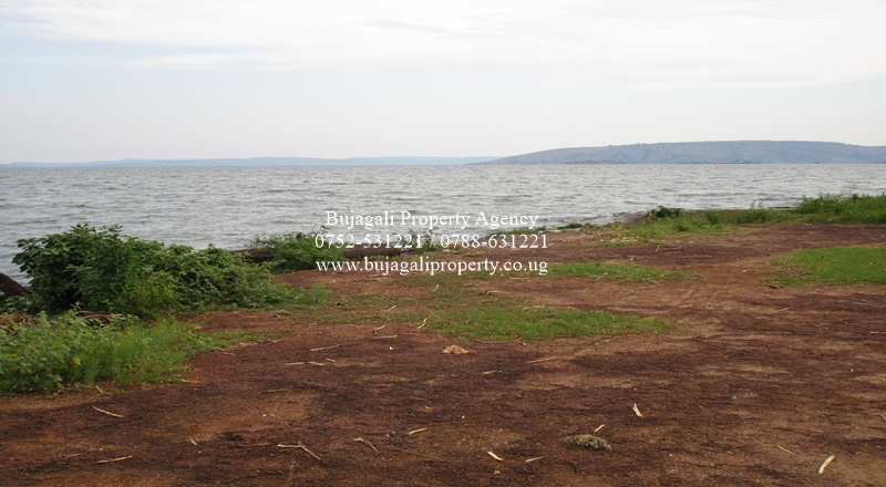 10 ACRE LAKESHORE TITLED LAND FOR SALE NEAR JINJA