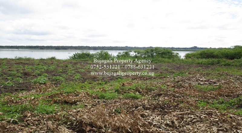 TITLED LAND FOR SALE BY THE RIVER SHORES AT KAYUNGA