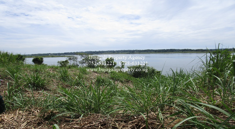 11 ACRES OF JINJA PRIME LAND FOR SALE TOUCHING RIVER NILE
