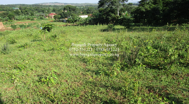 50FT X 100FT PLOTS FOR SALE AT BUJOWALI NJERU BUIKWE
