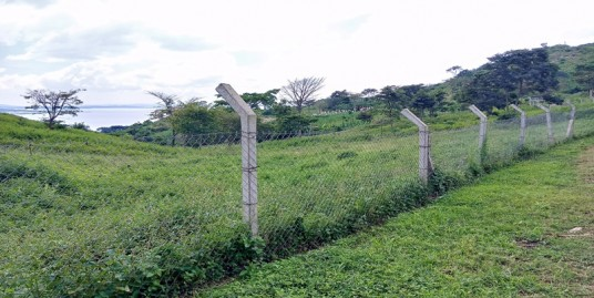 19 ACRE LAND FOR SALE AT MAYUGE KASITA LAKESIDE