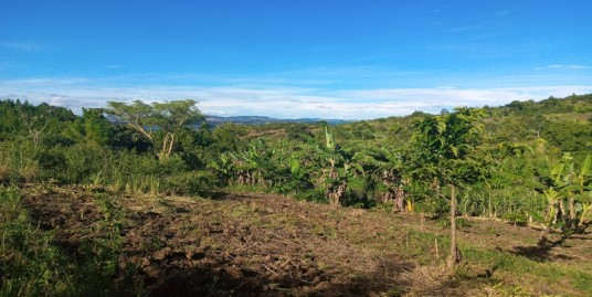 BUIKWE 3.2 ACRE TITLED FARMLAND FOR SALE NEAR JINJA TOWN