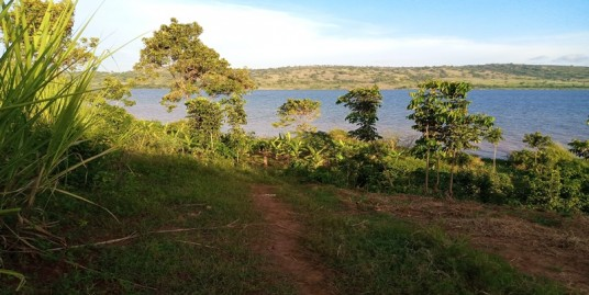 MAYUGE LAND FOR SALE TOUCHING LAKE VICTORIA SHORES