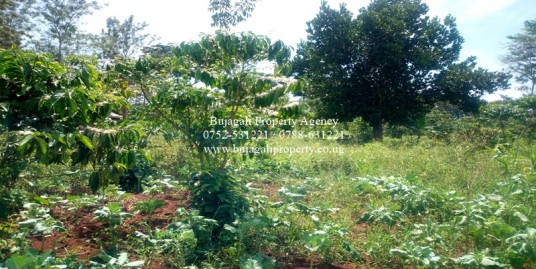 ONE ACRE LAND FOR SALE AT BUJAGALI BUDONDO SUB COUNTY
