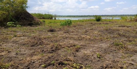 FOUR ACRE UNITITLED LAND FOR SALE ALONG THE NILE RIVER
