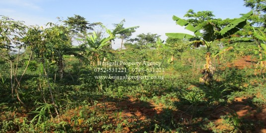 THREE ACRE TITLED AGRICULTURAL LAND FOR SALE AT BUSEDDE JINJA