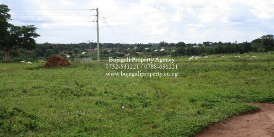 13 ACRE LAND FOR SALE AT MUSITA ALONG MAYUGE ROAD