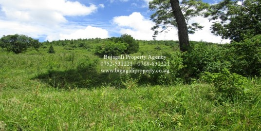 THREE ACRE LAND IDEAL FOR ESTATE DEVELOPMENT IN JINJA