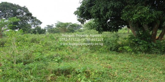 100 ACRES OF FARM LAND FOR SALE AT NANSOLOLO KAMULI