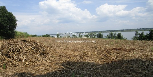 ONE ACRE PLOT FOR SALE ALONG THE NILE RIVER