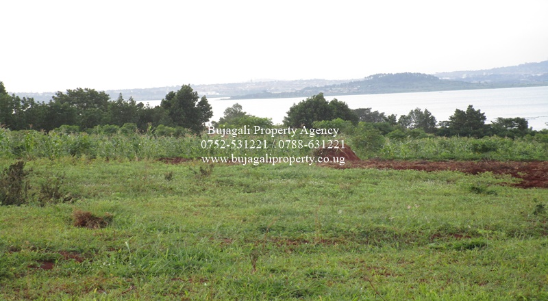 3 ACRE LAND WITH LAKE VIEWS FOR SALE NEAR JINJA TOWN