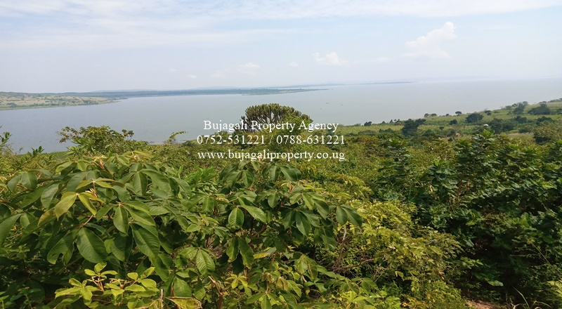 25 ACRES OF PRIME HILL SIDE LAND WITH VIEWS OF LAKE VICTORIA