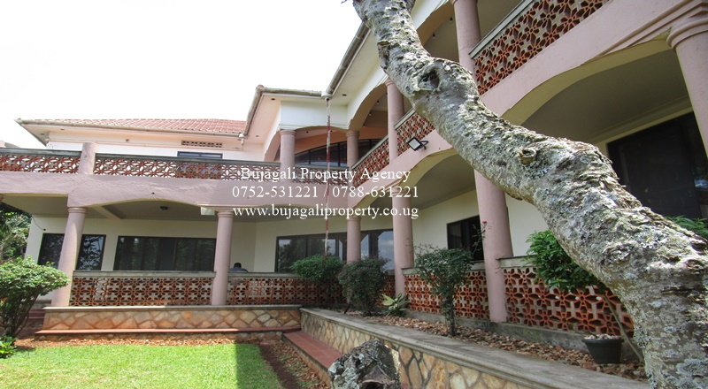 RIVERSIDE SEMI FURNISHED HOUSE FOR RENT IN JINJA CITY