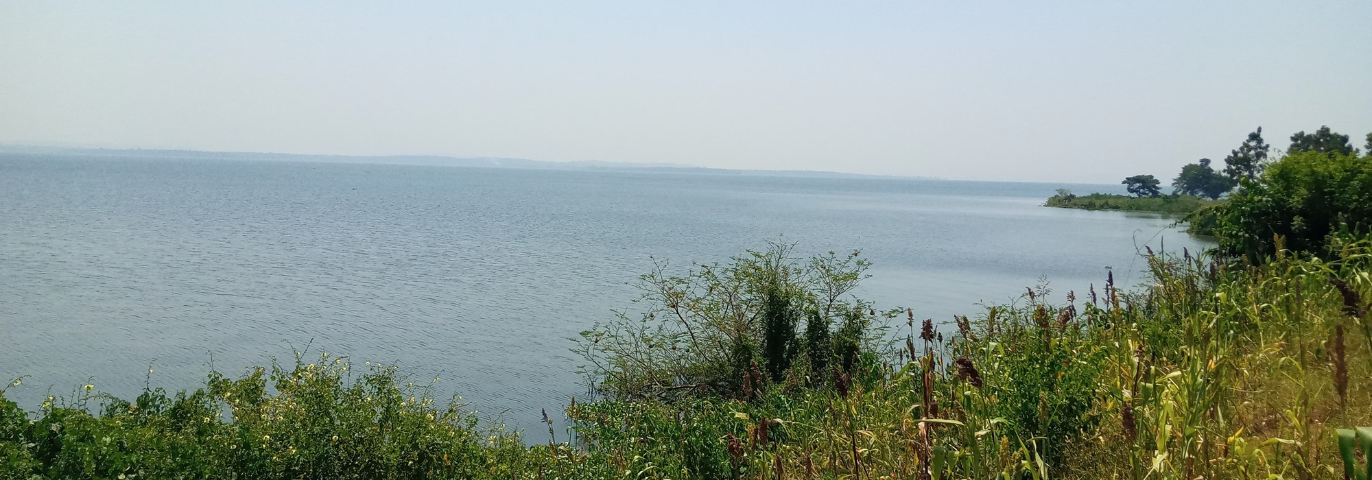 19.5 TITLED LAKESHORE LAND FOR SALE 20KM FROM JINJA CITY