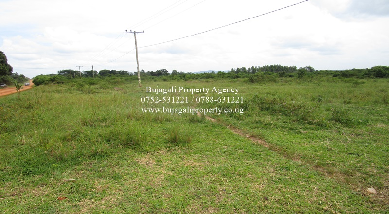 78 ACRE MAILO LAND FOR SALE AT BUKOMERO KIBOGA DISTRICT