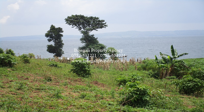10 ACRES OF PRIVATE MAILO BEACH LAND FOR SALE AT NYENGA