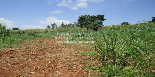 2.5 ACRE FREEHOLD TITLED LAND FOR SALE IN JINJA CITY