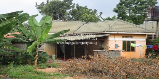 55FT X 100FT PLOT WITH A SMALL HOUSE FOR SALE AT WALUKUBA JINJA