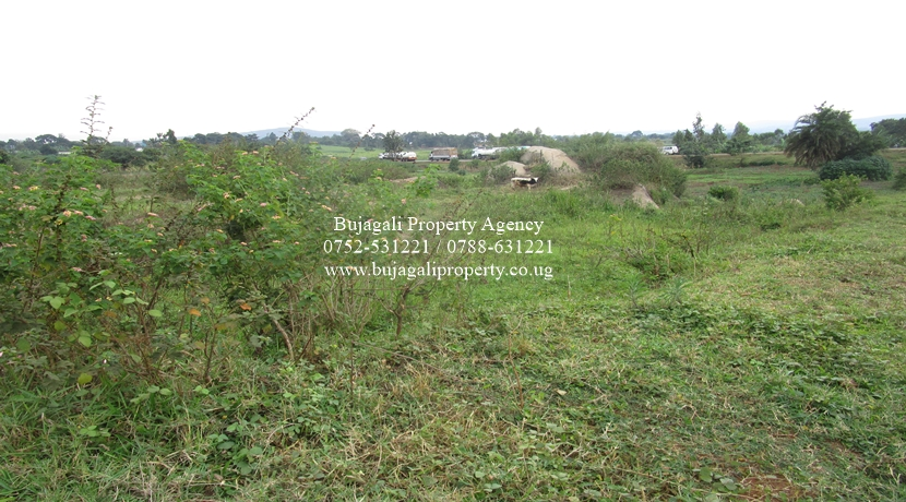 5.3 ACRE TITLED LAND FOR SALE ALONG THE ROAD AT MUSITA
