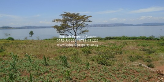 TWO ACRES OF BEAUTIFUL TITLED LAND ALONG THE SHORES OF LAKE VICTORIA JINJA